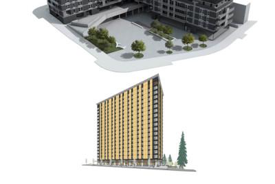 Estudio Comparativo de Construcción en Madera en Euskadi y Canada (Eraikal-Visesa)